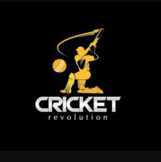 Cricket Revolution PC Game Offline Setup Download Free