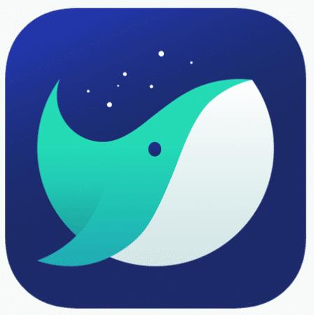 Whale Browser Offline Installer Setup For Windows Download Free