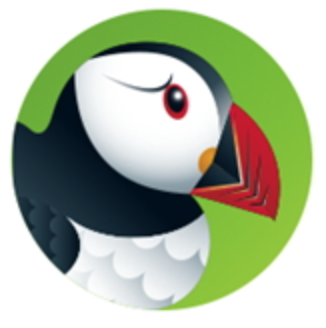 Puffin Browser Offline Installer Setup For Windows Download Free