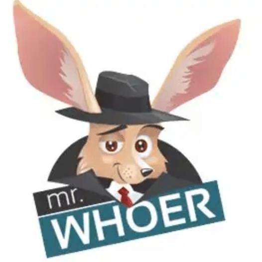 Whoer VPN Offline Installer Setup For Windows Download Free